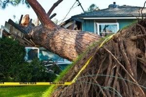 Storm Damages Repair