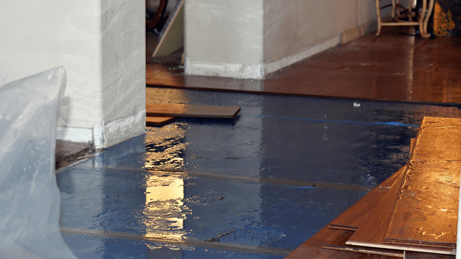 flood-damage-repair-canton