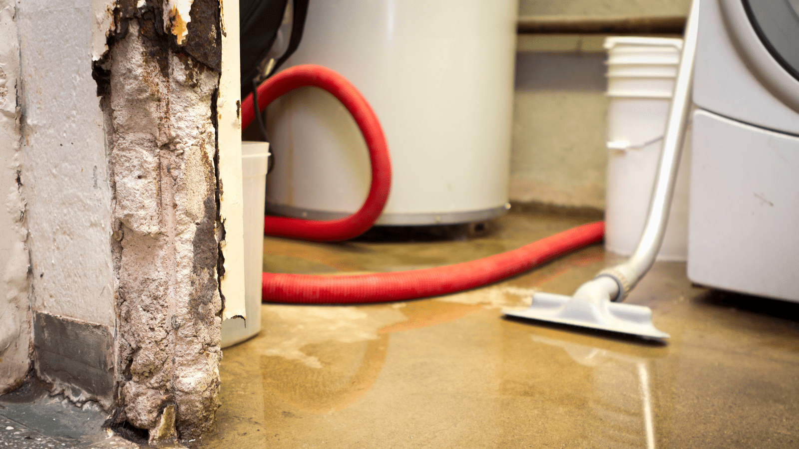 water-damage-removal-canton